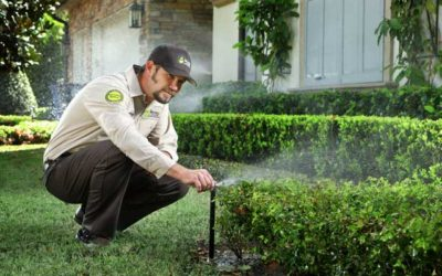 How to properly irrigate your Florida lawn