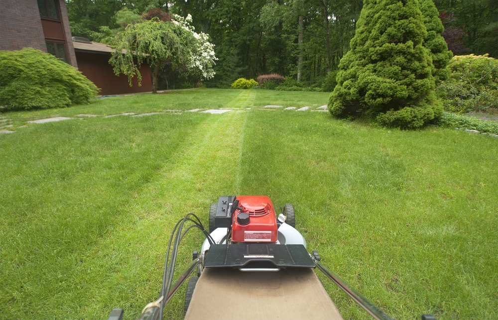 5 Reasons to Hire a Professional Lawn Care Service